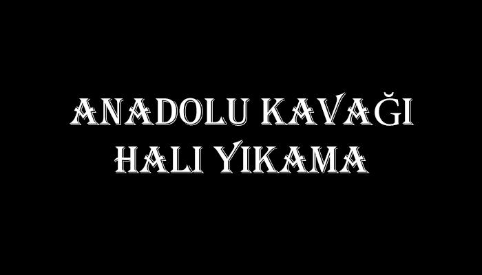 ANADOLU KAVAĞI MAHALLESİ MERİÇ HALI YIKAMA